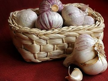 Повышение урожайности чеснока