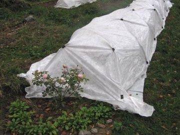 Нетканый материал для укрытия роз