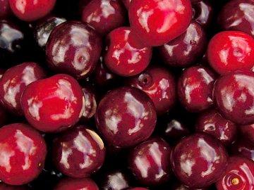 Собранные ягоды