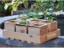 Деревянные ящики – еще одно решение для посадки рассады