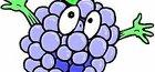 когда открывать виноград