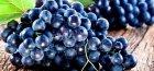 Виноград Чрный жемчуг