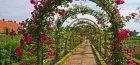 Арки для роз