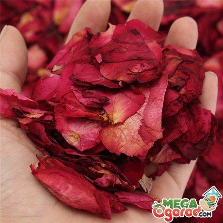Другие способы сушки лепестков роз