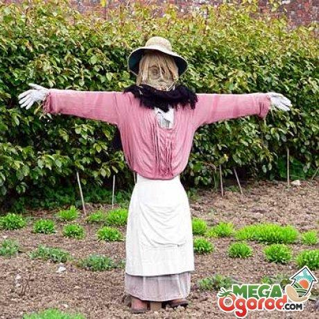 Огородное пугало – кукла из деревянных планок и старой одежды
