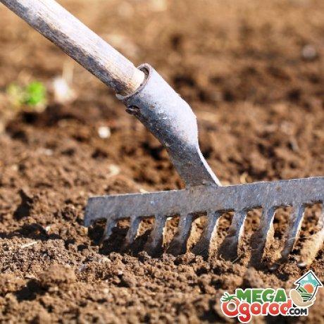 Подготовка участка и грунта под посев семян