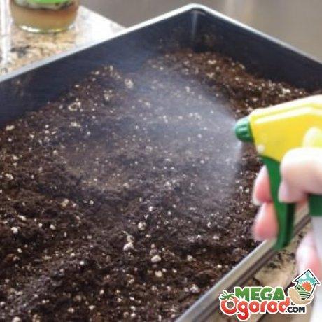 Химический метод обеззараживания почвы