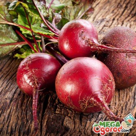 Советы по выбору овоща и его хранению