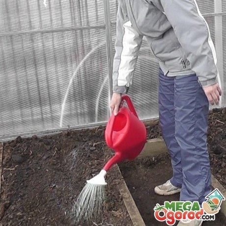 Агротехнический метод обеззараживания почвы