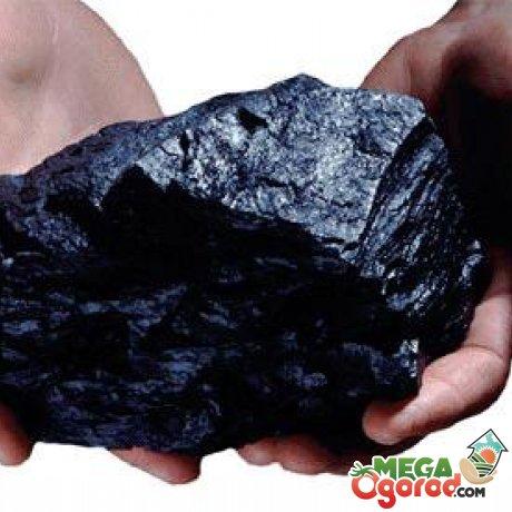 Преимущества угольной золы