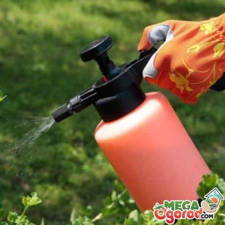 Применение пестицидов
