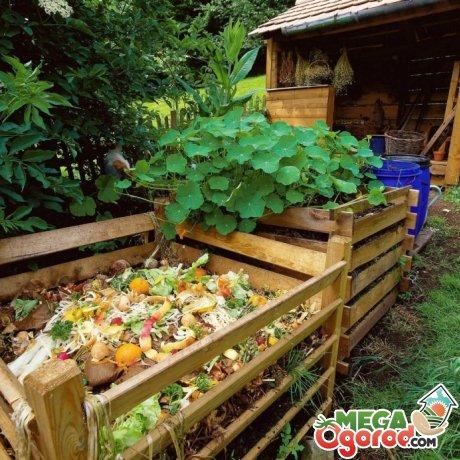 Процедура компостирования