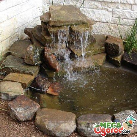 Необычный водоем – изюминка сада