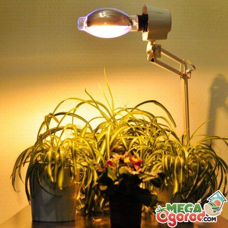 Как правильно устанавливать подсветку