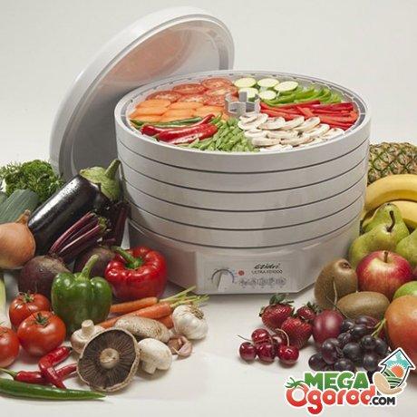 Особенности конструкции электросушилки для овощей, преимущества ее использования