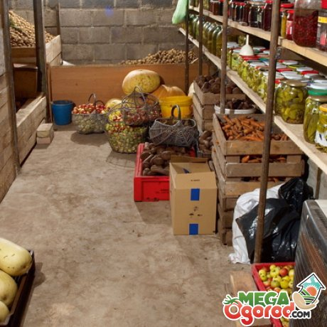 Преимущества овощехранилища