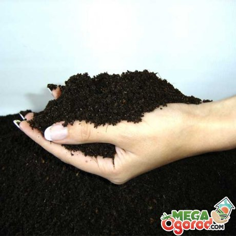 Способы обеззараживания почвы