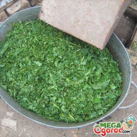 Как можно сделать измельчитель травы своими руками? Популярные способы