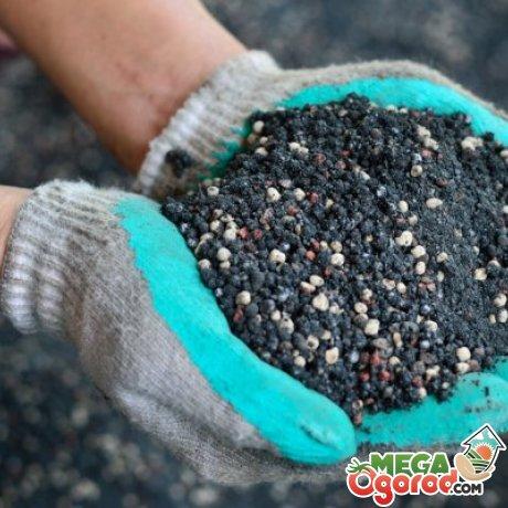 Подкормка почвы