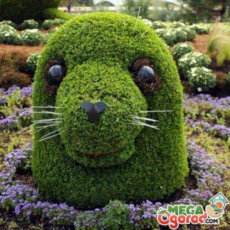 Лучшие идеи для создания «зеленых фигур», правила их использования