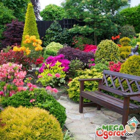 Секреты мастера по созданию цветников и клумб