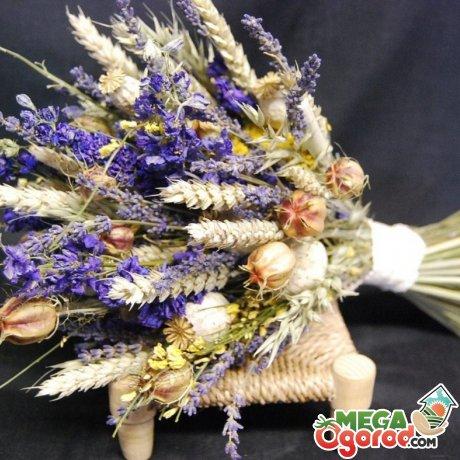 Как составить букет из сухоцветов