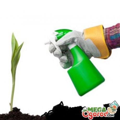 Вредители растений и борьба с ними