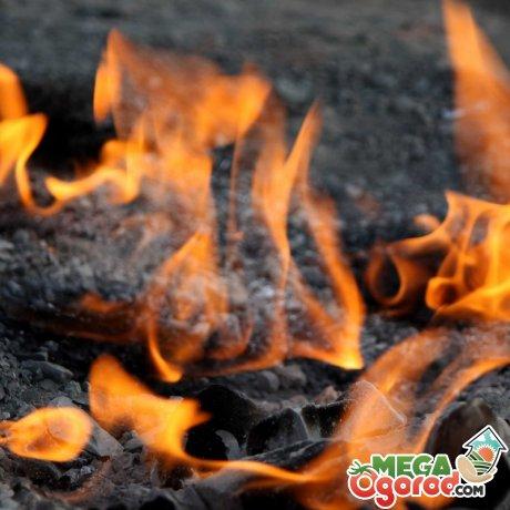 Что содержит и какими свойствами обладает угольная зола
