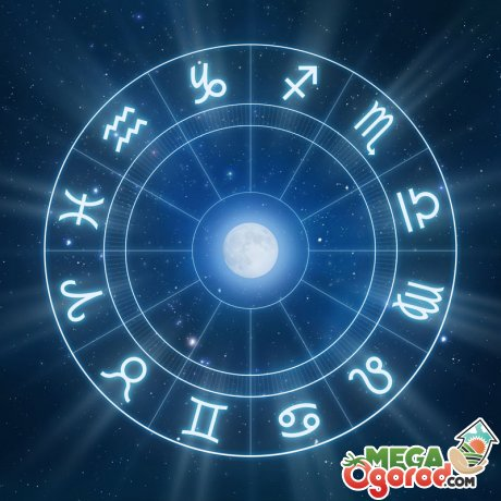 Как влияют на пересадку цветов знаки зодиака?