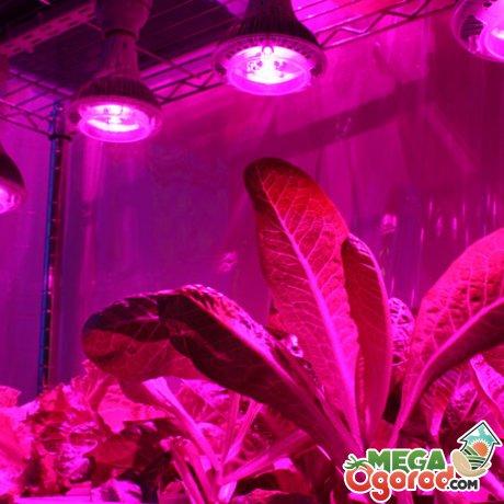 Организация искусственного освещения
