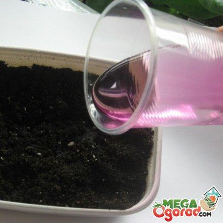 Подготовка почвы и материалов