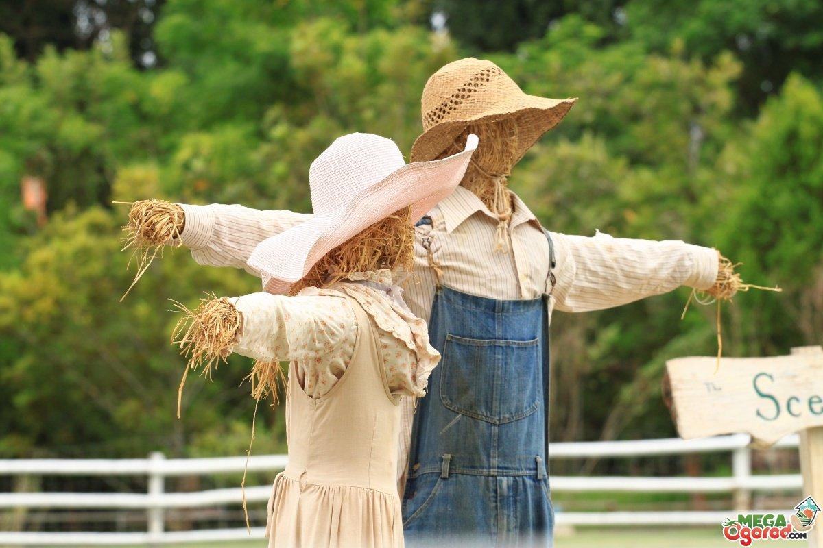 Как сделать пугало своими руками в огород фото 297