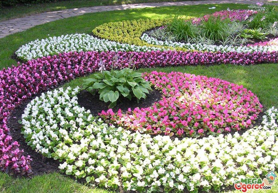 Схема как посадить цветы 209